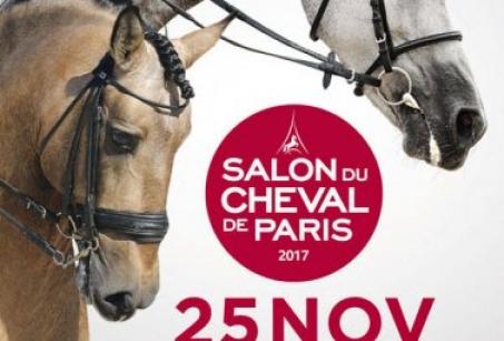 Salon du cheval de paris for Salon du cheval a paris